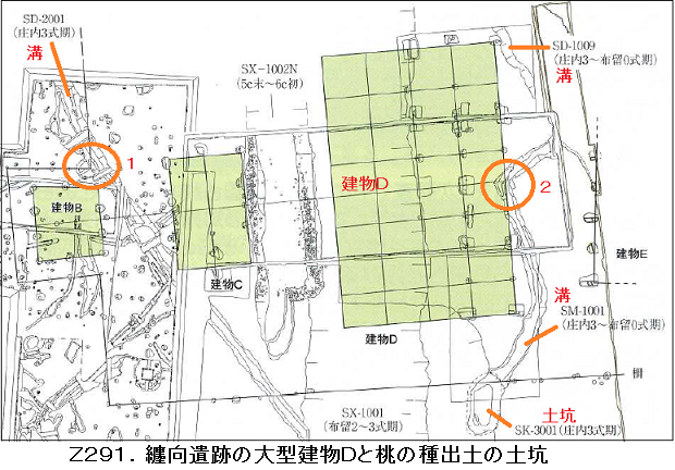 Z291.巻向宮殿柱図面.png